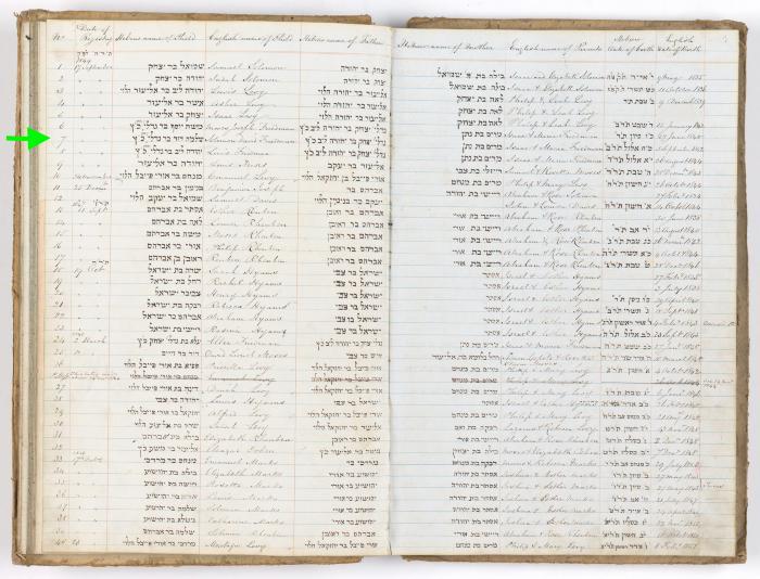 Solomon David Friedman birth record