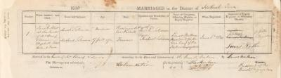 Michael Solomon & Sarah Solomon marriage record