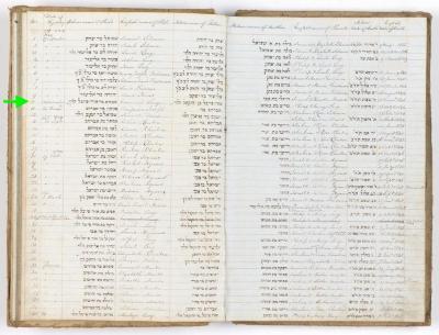 Emanuel Levy birth record