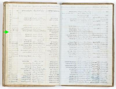 Henry Chapman Susman birth record