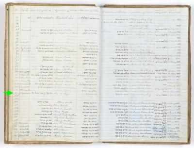 Samuel Levy birth record
