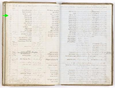 Rachel Solomon birth record