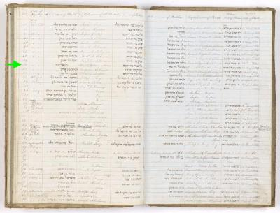 Charlotte Alice Moses birth record