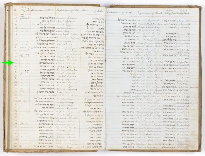 Moses Rheuben birth record