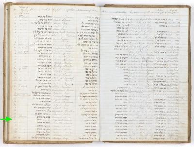 Elizabeth Marks birth record