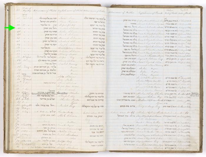 Rachel Solomon birth record