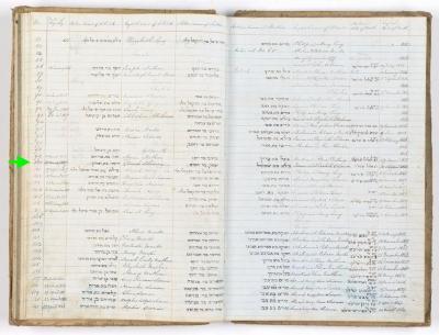Dinah Solomon birth record